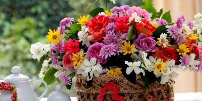 Flower Coupons 50% Off, Free Next Day Delivery